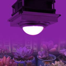 1000W Watt COB LED Grow Light Full Spectrum Lamp W/Cooling F