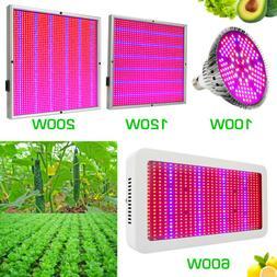 100W 120W 200W 600W LED Grow Light Full Spectrum Lamp for In