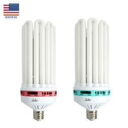 150W 200W 250W 300W CFL Grow Light Bulb Compact Fluorescent