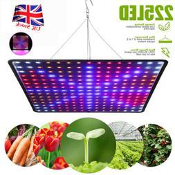 2000W LED Full Spectrum Plant UV Grow Light Veg Lamp For Ind