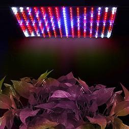 Flexzion 225 LED Grow Light Panel Blue + Red 14 Watt Hydropo