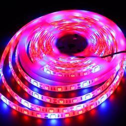 5M Waterproof SMD5050 300Leds LED Strip Grow Light Lamp Full