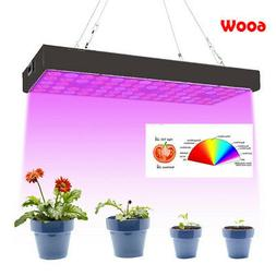 600W LED Plant Grow Light with Thermometer Humidity Monitor