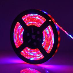blue red smd 5050 led strip grow