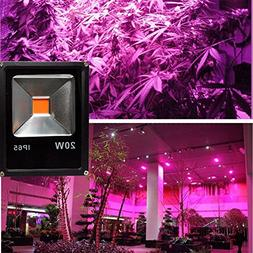 Cold White, 20w : LED Grow Light 10W 20W 30W 50W LED Flood S