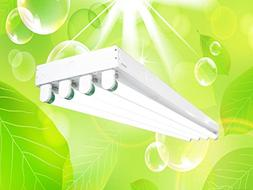 DuroLux DL344 T8 4Ft Fluorescent 4 Lamps Grow Lighting Syste