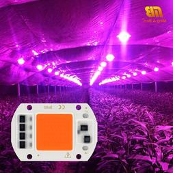 <font><b>LED</b></font> <font><b>Grow</b></font> COB Chip Ph