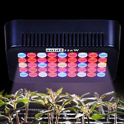 WattShine LED Grow Lights 450W Growing Lighting, Grow Light
