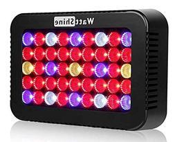WattShine LED Grow Lights – 450W Growing Lighting, Grow Li
