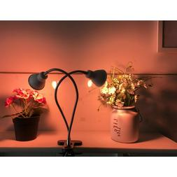 Herb Grow Light Weed Growing Lamp Plant Photosynthesis Marij