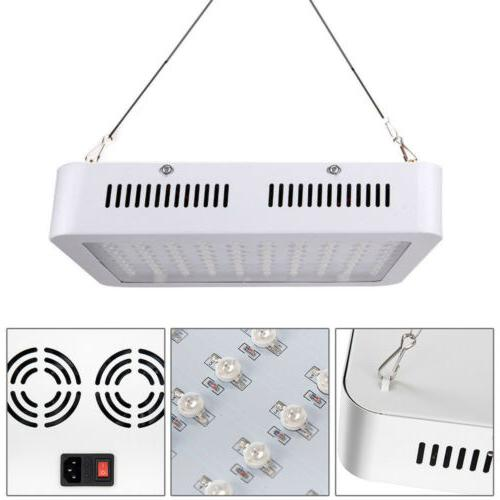 1000W LED Grow Full Lamp Hydroponic Indoor Plants Flower