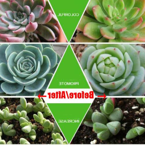 1000W 100pcs Grow Flower Oganic Growing Spectrum