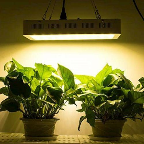 Roleadro LED Light 2nd Plant Light