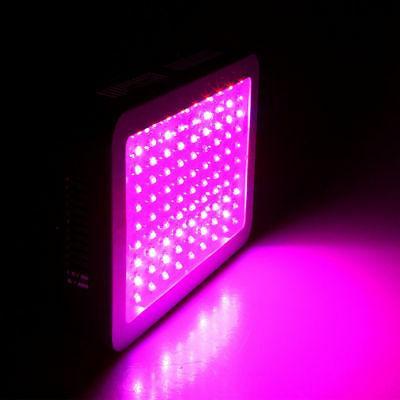 1000W 45W power LED Grow Light Lamp Full Spectrum Hydroponic