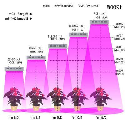 1200W Lamp Hydro Seed Growing ColoFocus