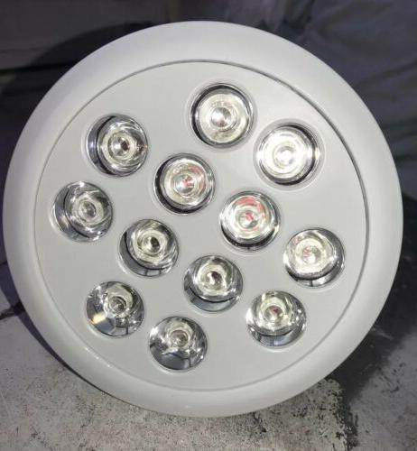12W 12 LED Full Blue Flower Grow Bulb