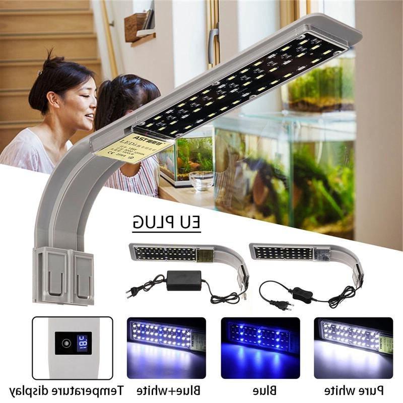 15W Lamp Tank Lantern Luminary <font><b>Thermometer</b></font>