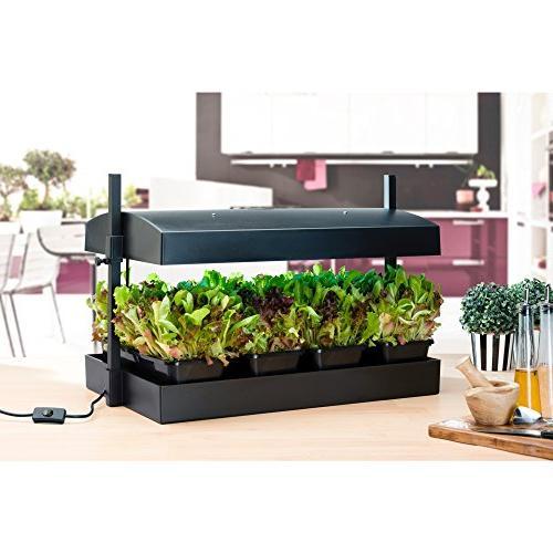 SunBlaster Grow Light Black 1600200 Garden,