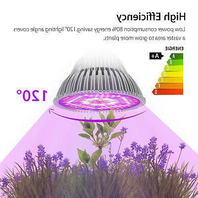 100Watt Grow Bulb E27 Full Spectrum Fruit