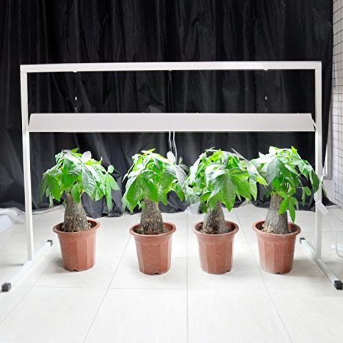 iPower 54WX2 2-Bulb T5 Grow Light Stand Seed Starting Plant Growing, 6400K