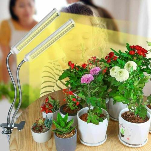 Light Lamp Lights for Hydroponics