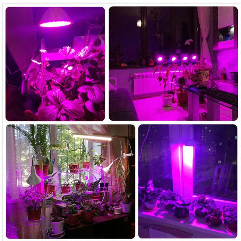 200 Plant Grow Light hydro Clip