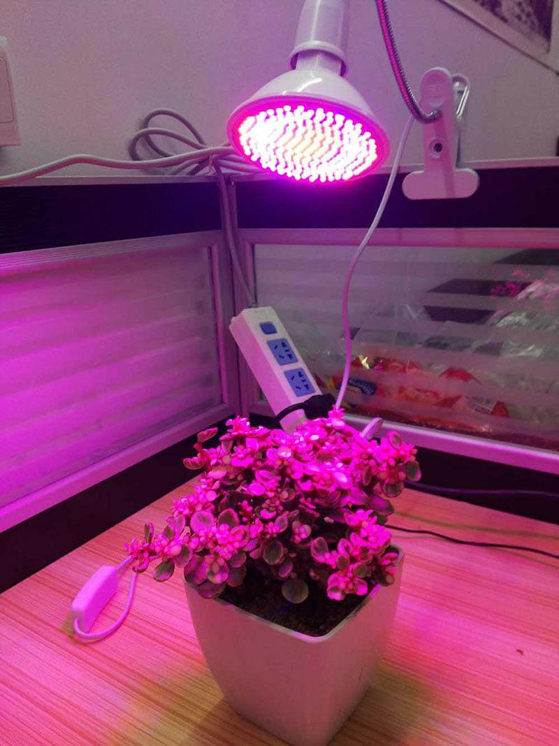 200 Grow Light hydro Greenhouse Clip