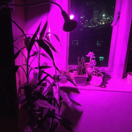 200 Led kit spectrum Plant Flower growing For indoor Veg room