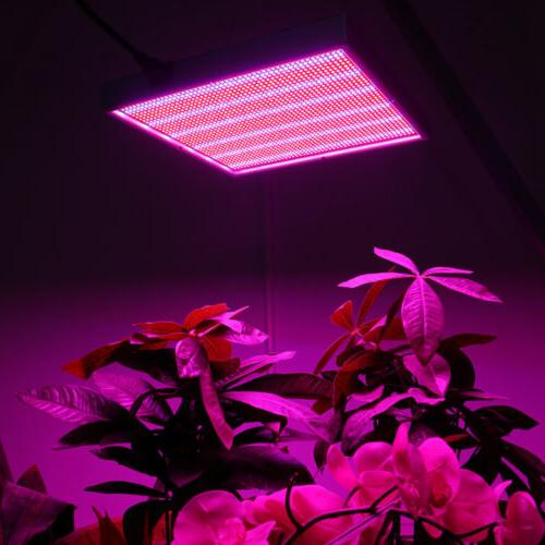 200W Panel for Hydroponic