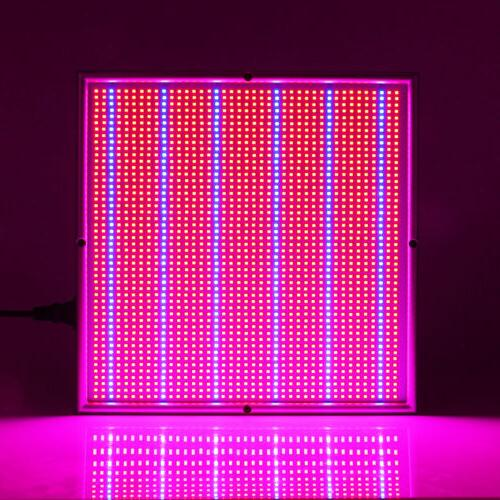 200W Panel 2009 LEDs for Plants