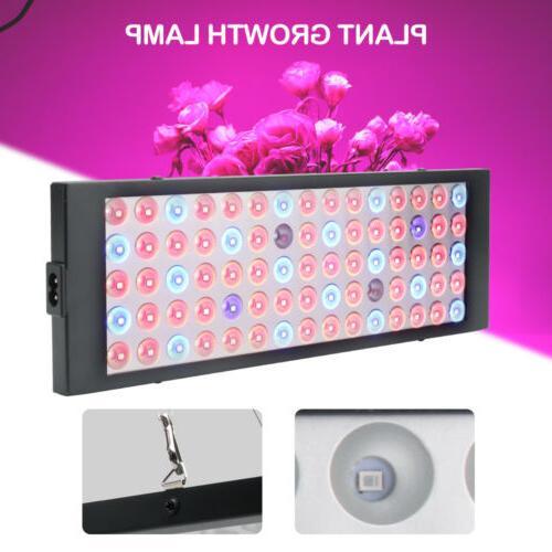 2000w LED 75LED UV Lamp Hydroponic Plant