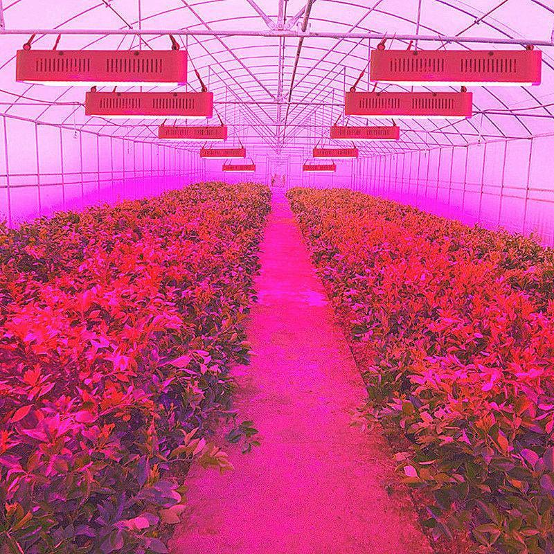1500w led grow light kits hydro full