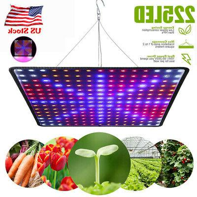 2000W LED Full Spectrum Plant UV Grow Light Veg Lamp For Ind