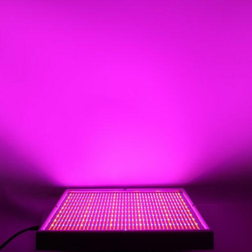 200W LED Grow Light Full Spectrum Flower Indoor Panel
