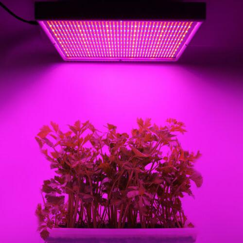 200W 2000LEDS LED Grow Light Full Flower Lamp Panel