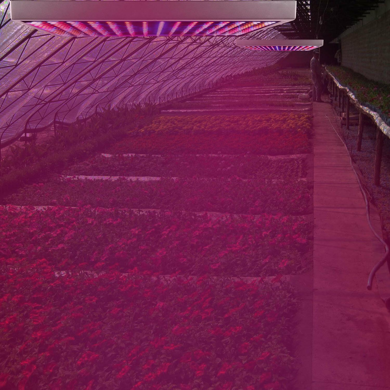 225/200 LEDs Plant Grow Lamp Light For Plant