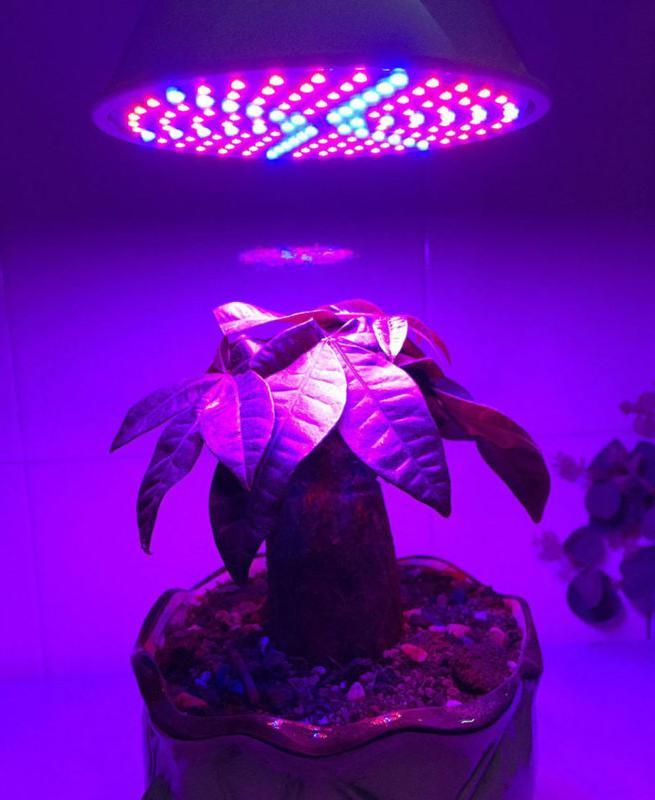 290/200/106 LED Light E27 Light for R