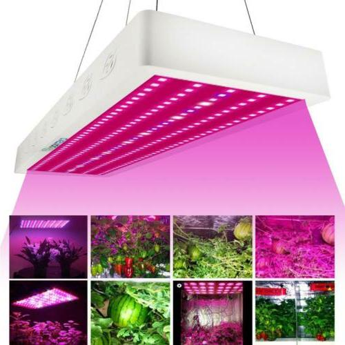 3000W Spectrum LED Grow Medical Indoor