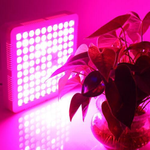3500W Grow Full Spectrum Indoor Lamp Panel