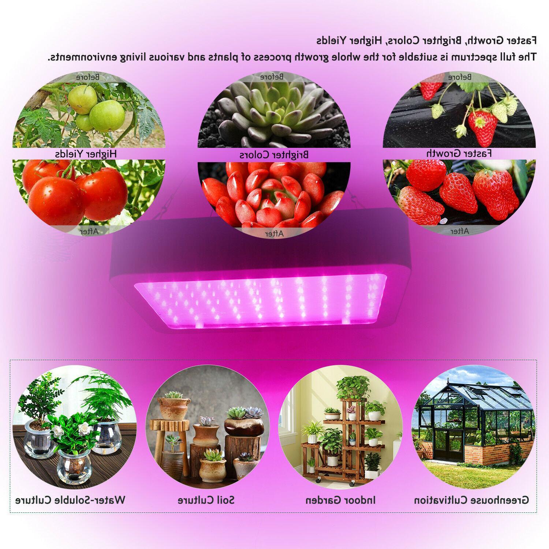 1000W LED Light Hydroponics Full Plant
