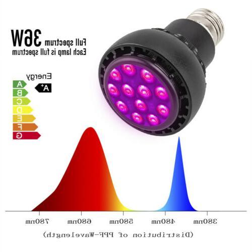 36W Light Lamp 3030 Flower Seed Bulb