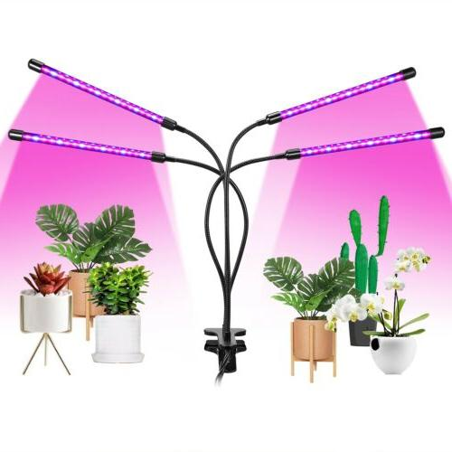 Grow Light Plants 80 with Full Timer