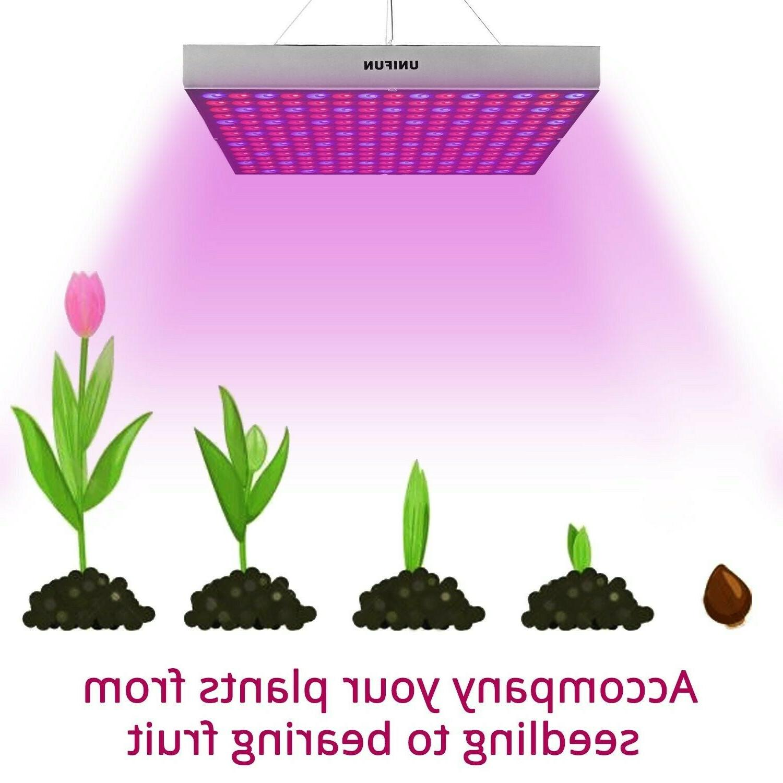 45W LED Grow Bulbs Growing