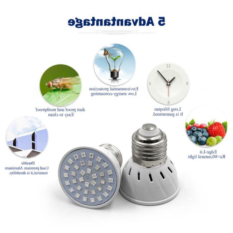 4W <font><b>Light</b></font> Plant Seed GU10 Growing Bulbs 220V