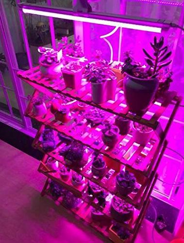 Ledy 3.2ft 5050 Soft Light For Plant Flower Seeds Seedlings Blue 12V 2A Adaptor
