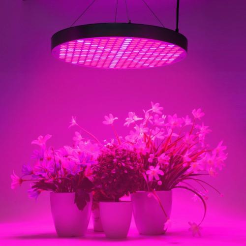 50W Lights, Shengsite UFO 250 LEDs Plants Lamp