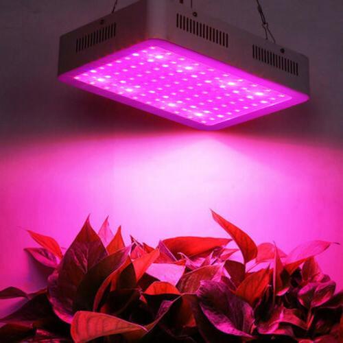 600W/1000W/1200W LED Grow Light Full Spectrum for Indoor Pla