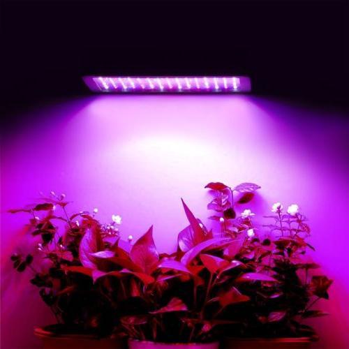 600W 1200W Watt Grow Lamp Flower Spectrum