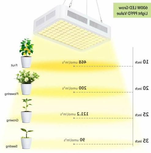 600W LED Grow Hydroponic