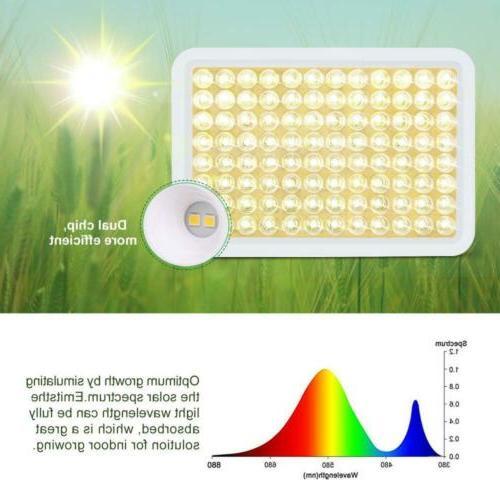 600W Grow Roleadro LED Light Indoor Plant,